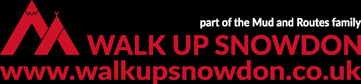 Walk up Snowdon